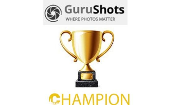 Gurushots champion level