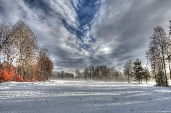 Winterfog