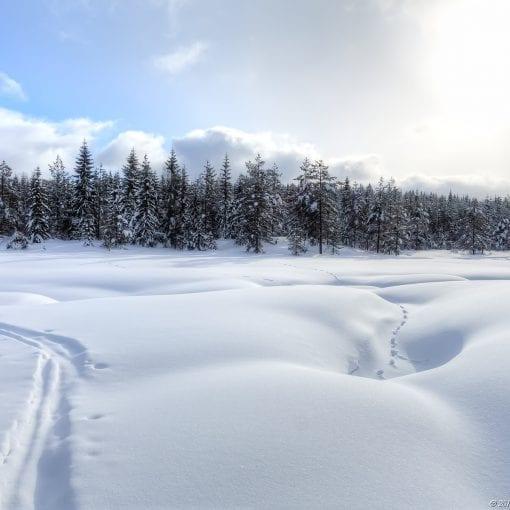 Merkdammen Vinter #2