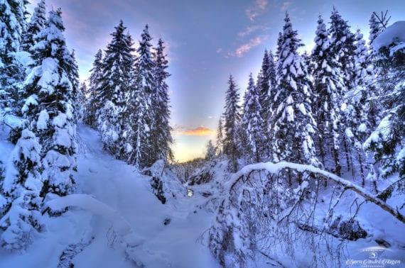 Winter road ahead